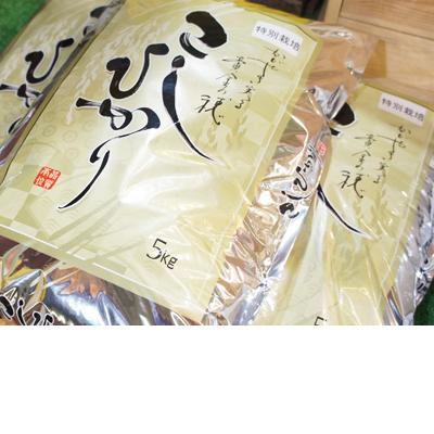 こしひかり(3kg)
