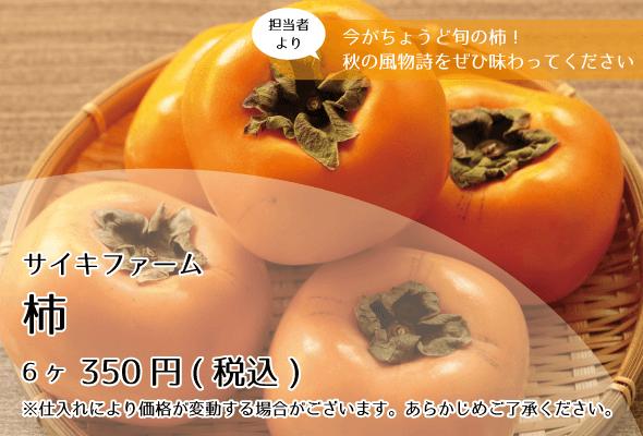 サイキファーム_柿