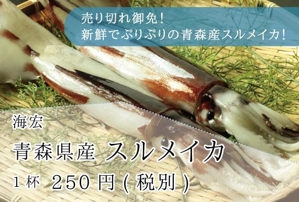 海宏_青森県産スルメイカ