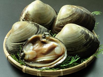 ほっき飯の主役!天然ほっき貝