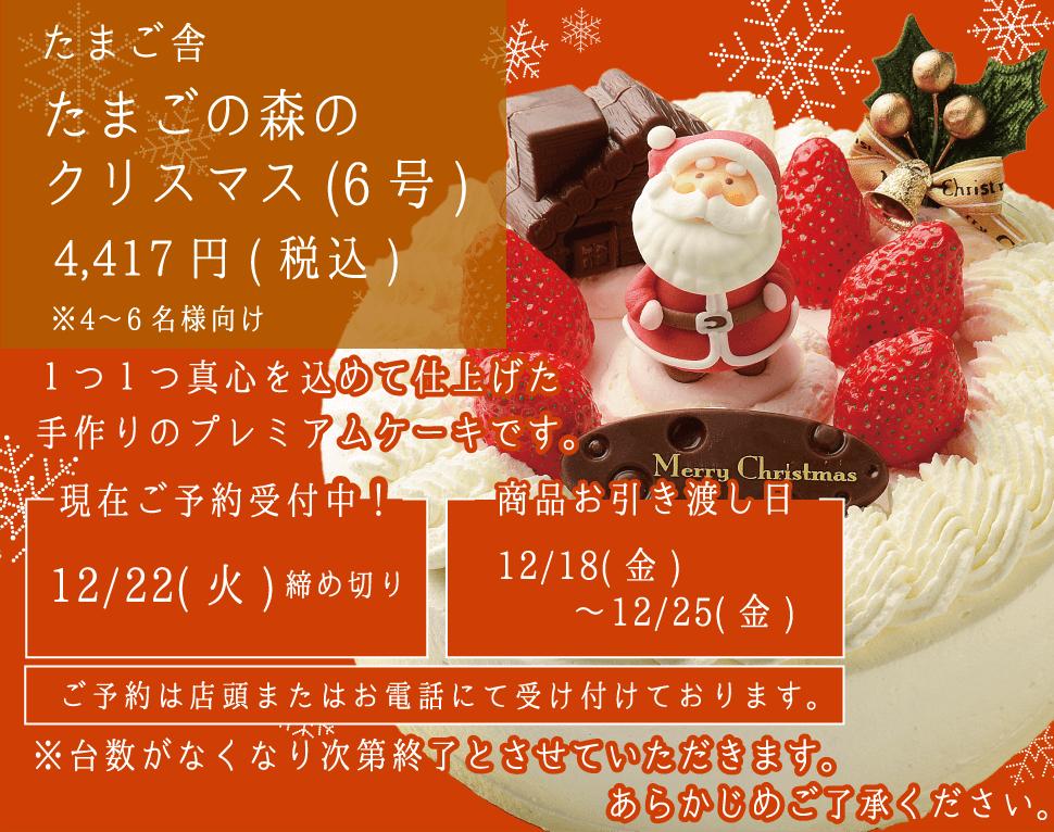 たまご舎_たまごの森のクリスマス(6号)_4〜6名様分_予約受付中_sp