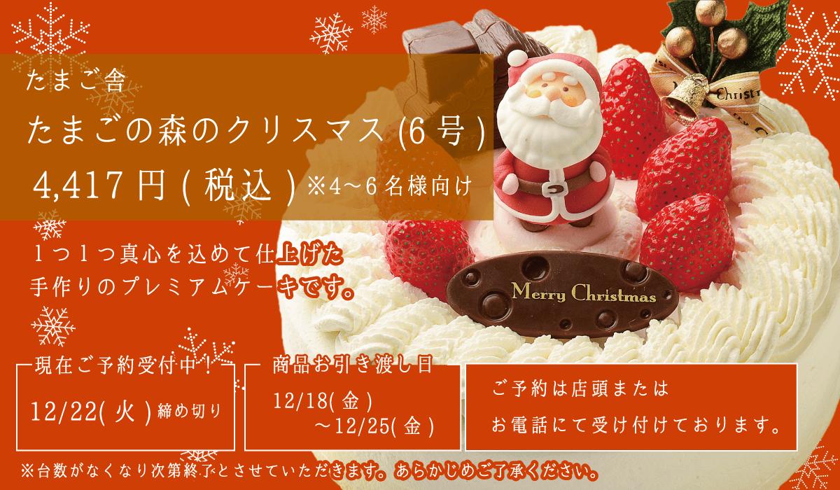 たまご舎_たまごの森のクリスマス(6号)_4〜6名様分_予約受付中