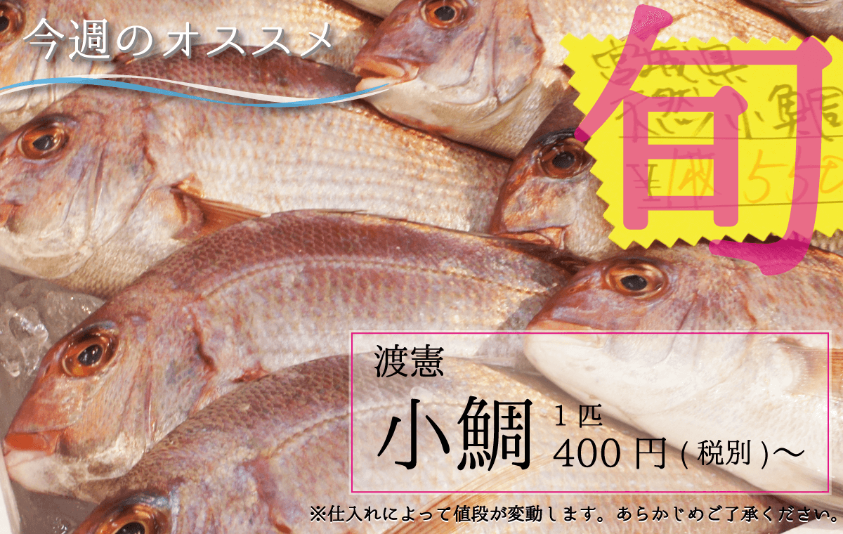 渡憲 小鯛 こだい 鯛 1匹400円(税別)〜