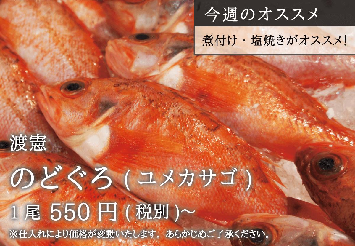 渡憲 のどぐろ 1尾550円〜