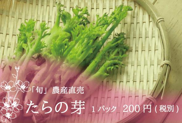 「旬」農産直売 たらの芽 1パック200円(税別)