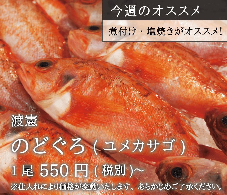 渡憲_のどぐろ_1尾550円〜_sp
