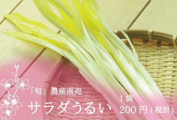 「旬」農産直売 サラダうるい 1袋200円(税別)