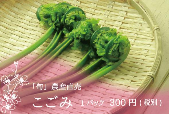 「旬」農産直売 こごみ 1パック300円(税別)