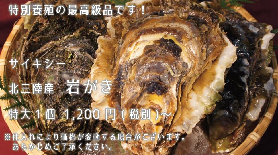 サイキシー 北三陸産岩がき 特大1個1200円