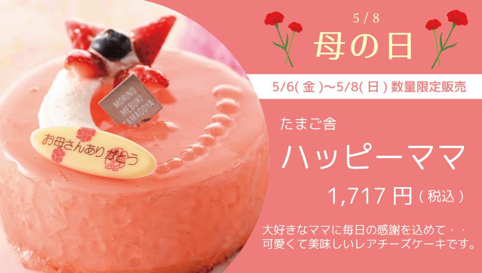 たまご舎 5/6(金)〜5/8(日)数量限定販売 可愛くて美味しいレアチーズケーキ ハッピーママ 1717円