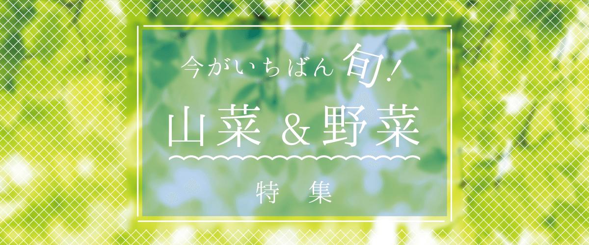今がいちばん旬!山菜&野菜特集
