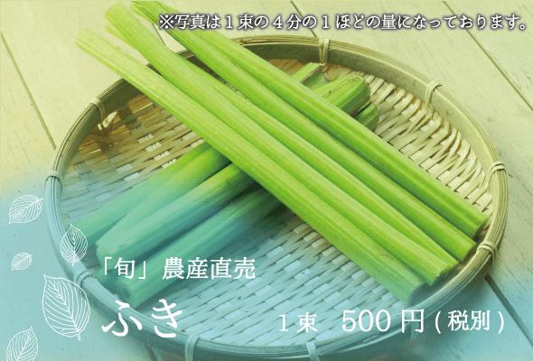 旬農産直売 ふき1束500円