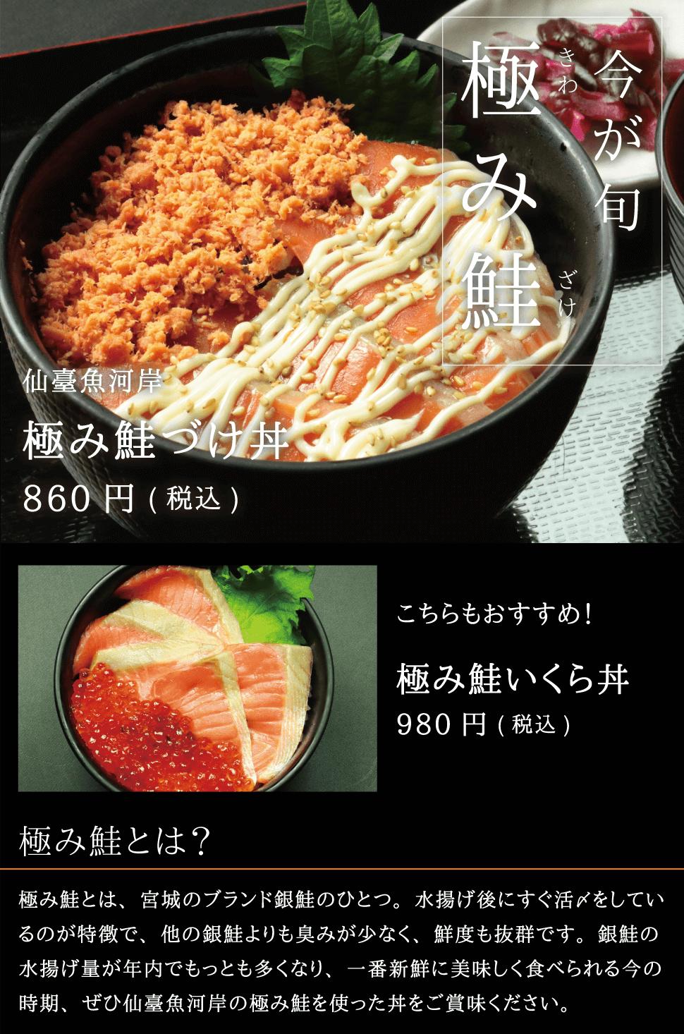 仙臺魚河岸 今が旬宮城のブランド銀鮭 極み鮭 極み鮭漬け丼 極み鮭いくら丼