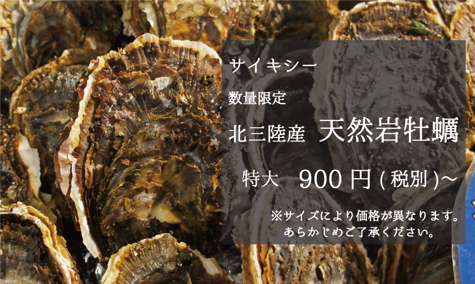 サイキシー 数量限定 北三陸産天然岩牡蠣 特大900円〜