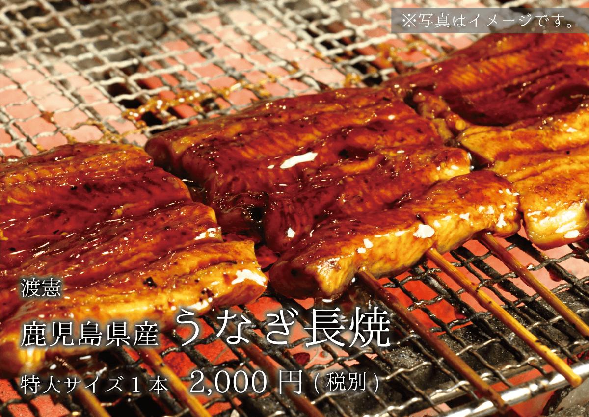 渡憲 鹿児島県産うなぎ長焼 特大サイズ1本 2000円