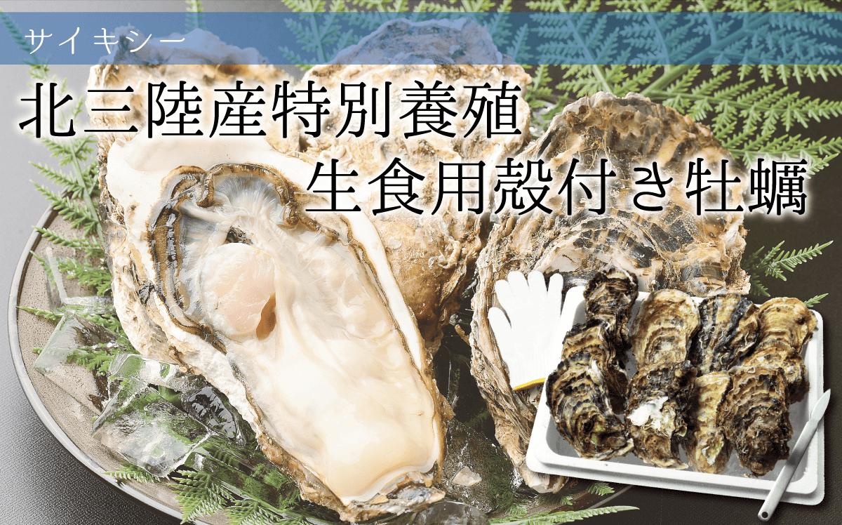 北三陸産特別養殖 生食用殻付き牡蠣