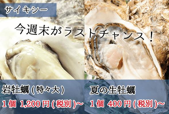 サイキシー 岩牡蠣 生牡蠣