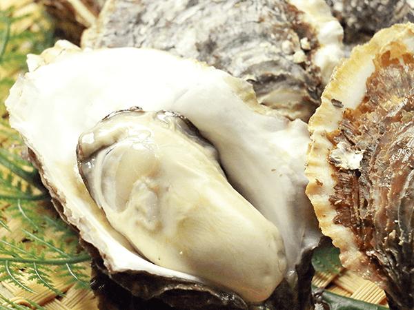 北三陸産特別養殖 天然岩牡蠣