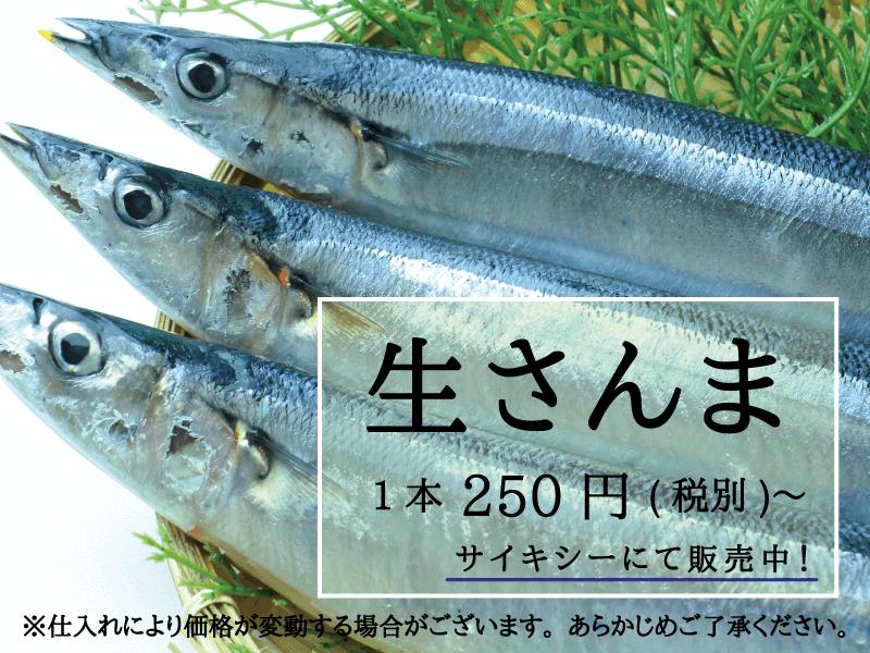 サイキシー 生さんま 250円〜