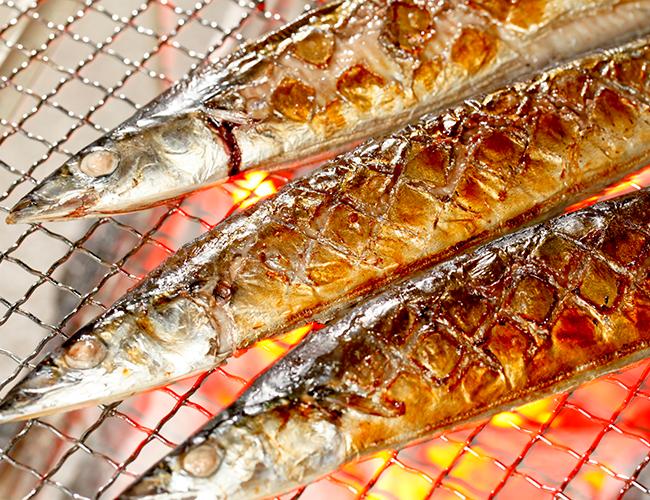 さんま サンマ 秋刀魚