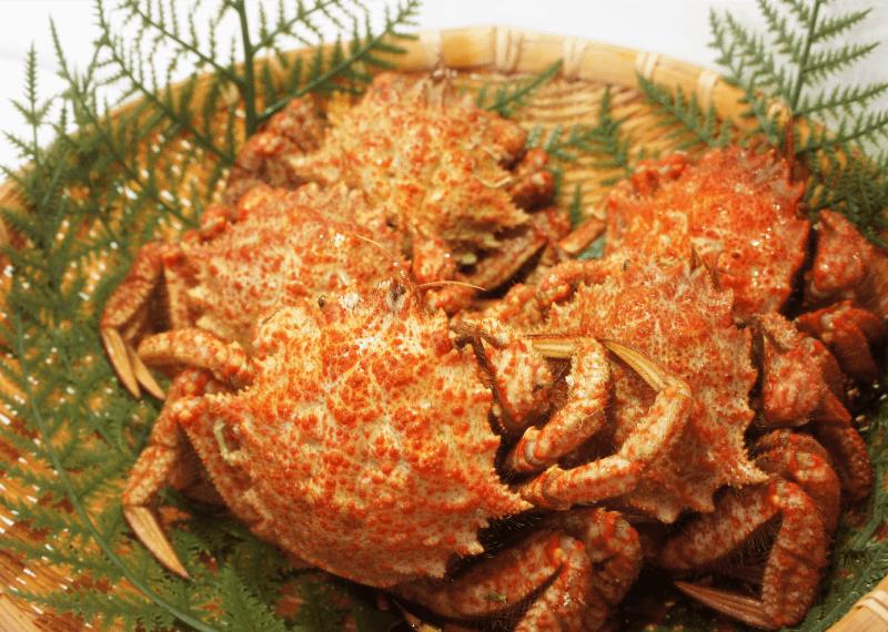 石巻産 ツクモガニ