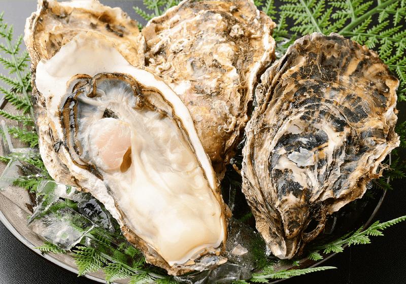 北三陸産 特別養殖牡蠣(生食用)