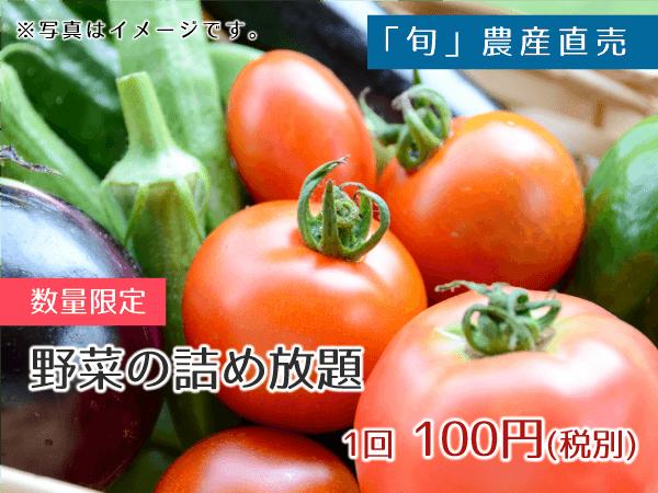 「旬」農産直売 野菜詰め放題 100円(税別)