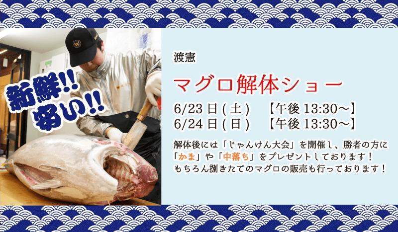 マグロの解体ショー 6/23(土) 6/24(日) 13:30〜