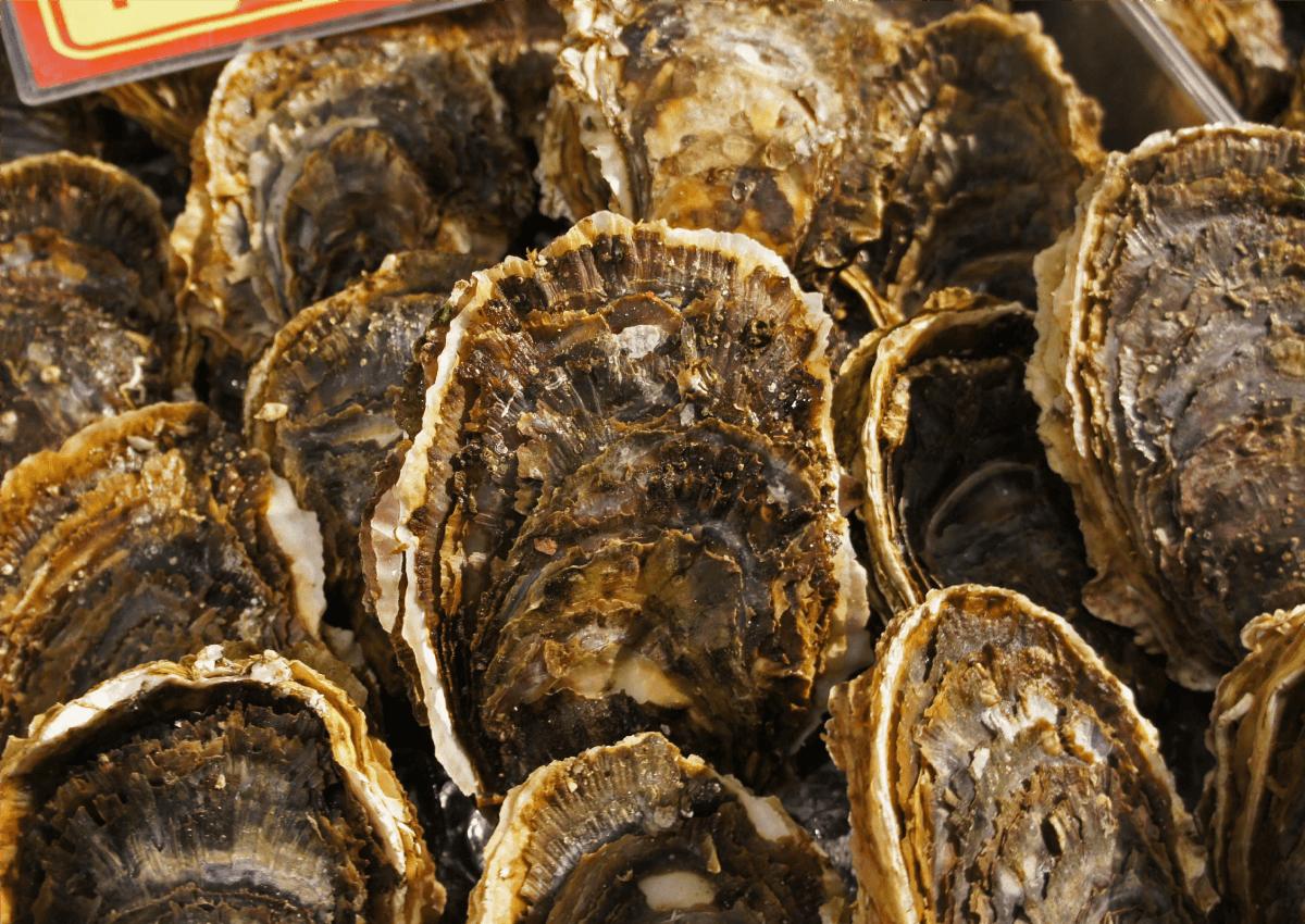 北三陸産 天然岩牡蠣