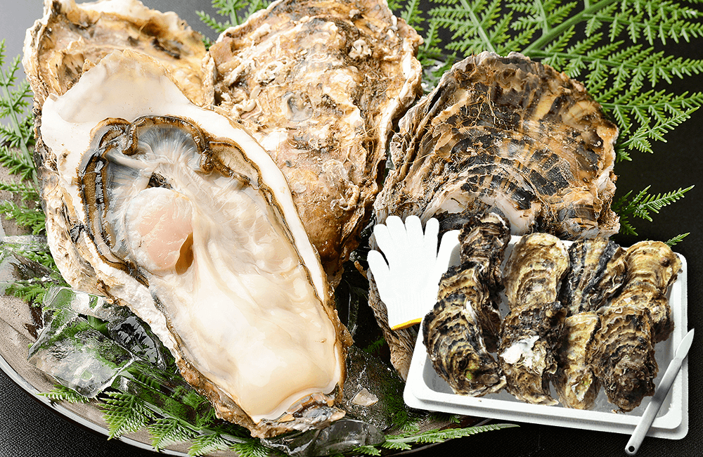 北三陸産特別養殖牡蠣セット