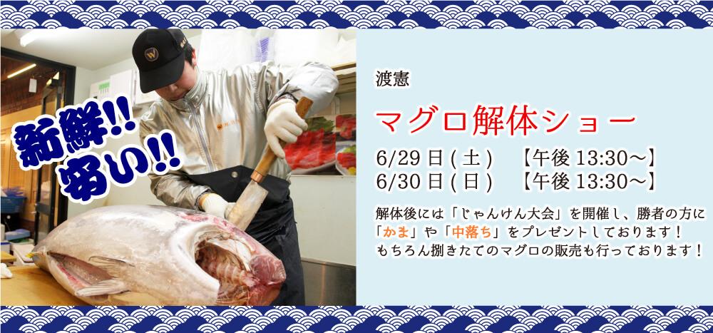 マグロの解体ショー 6/29(土) 6/30(日) 13:30〜