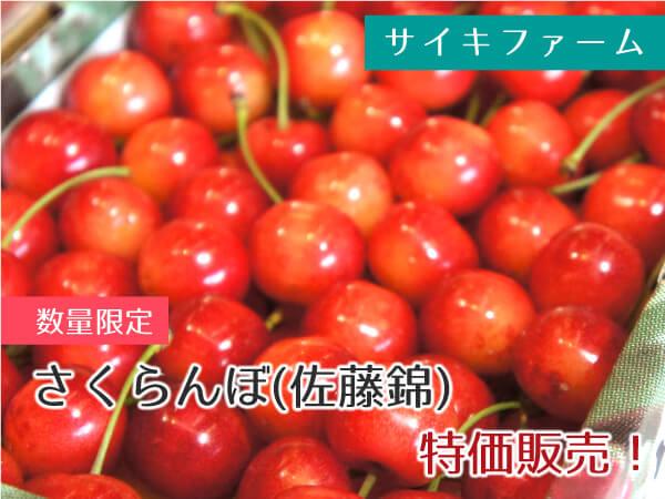 サイキファーム さくらんぼ(佐藤錦) 1箱 1,000円(税込)